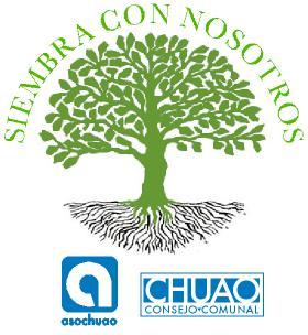 Jornada de Reforestación Chuao Día del Arbol